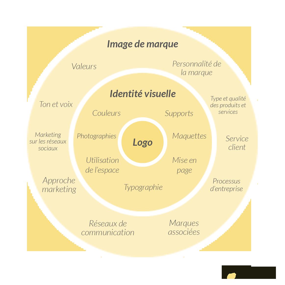 infographie sur l'image de marque, l'identité visuelle et le logo d'une entreprise